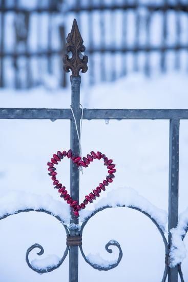 Heart on the Fence and Snow-Andrea Haase-Photographic Print