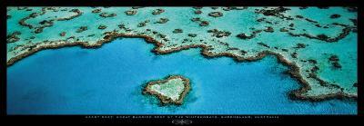 Heart Reef, Great Barrier Reef-Grant Faint-Art Print