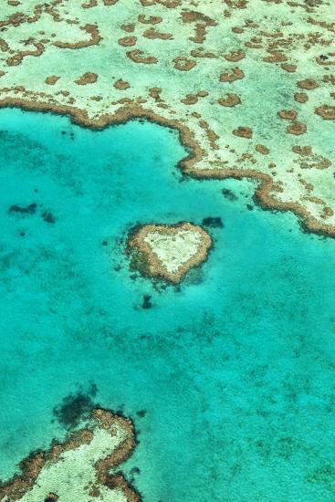 Heart Reef I-Larry Malvin-Photographic Print