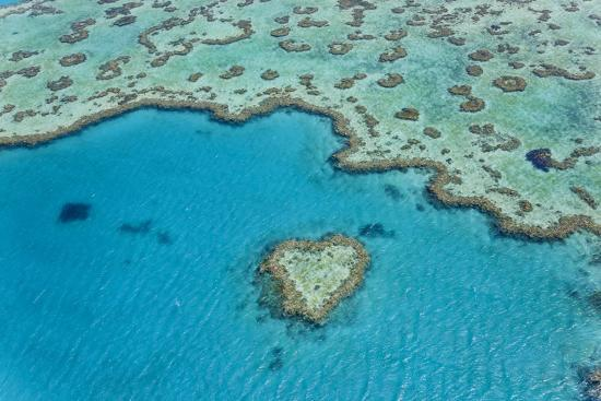 Heart Reef, Part of Great Barrier Reef, Australia-Peter Adams-Photographic Print