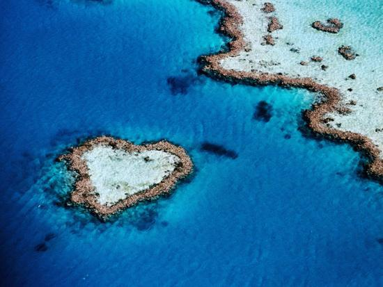 Heart-Shaped Reef, Hardy Reef, Near Whitsunday Islands, Great Barrier Reef, Queensland, Australia-Holger Leue-Photographic Print