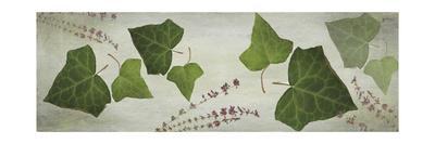 https://imgc.artprintimages.com/img/print/heather-and-ivy_u-l-q13d2hn0.jpg?p=0