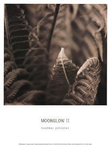 Moonglow II by Heather Johnston