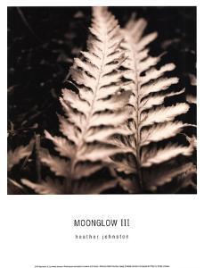 Moonglow III by Heather Johnston