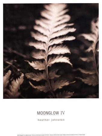 Moonglow IV