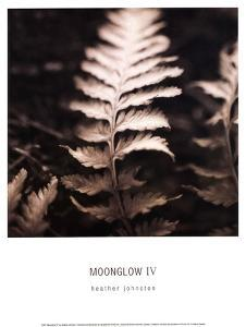 Moonglow IV by Heather Johnston