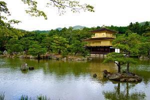 Kyoto's Kinkaku Golden Pavilion at Rokuon-Ji Temple by Heather Perry