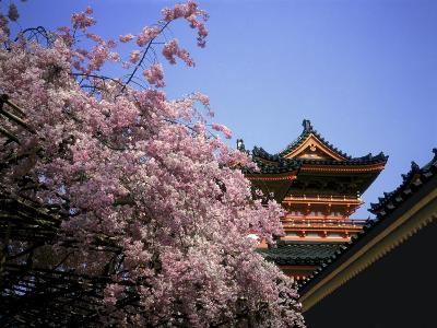 Heian Shrine, Kyoto, Japan--Photographic Print