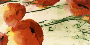 Poppies by Heidi Reil