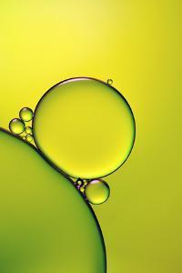 Lemon Lime by Heidi Westum