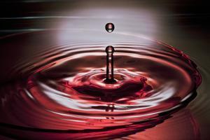 Red Intens by Heidi Westum