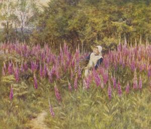 Girl Gathering Sticks in Kent Walks Through a Mass of Foxgloves by Helen Allingham