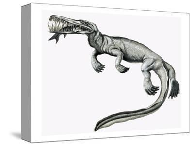 Prehistoric Crocodile Eating a Fish