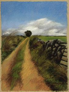 A Road in Galway by Helen J^ Vaughn