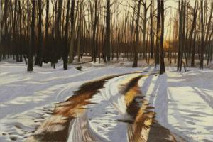 A Snowy Path at Tanglewood by Helen J^ Vaughn