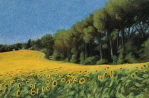 Sunflowers in Perugia by Helen J^ Vaughn