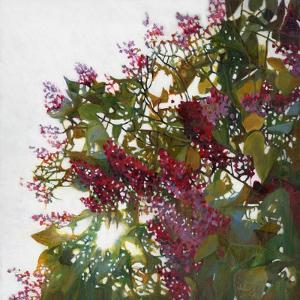 All Aglow, 2015 by Helen White