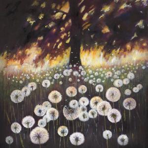 Field of Dreams, 2015 by Helen White
