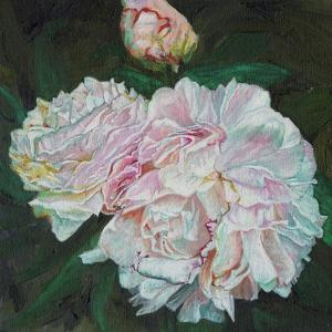 First Blooms, 2012 by Helen White