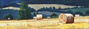 Haybales on hillside, 2012, by Helen White