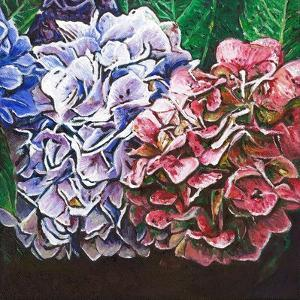 Hydrangeas, 2010, by Helen White