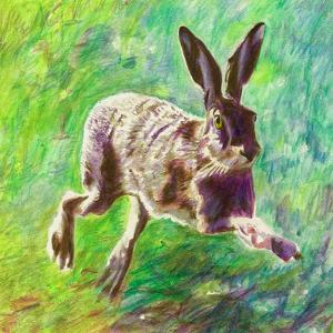 Joyful Hare, 2011 by Helen White