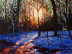 Sunset on Snow, 2010 by Helen White