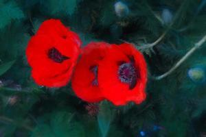 Three Poppies of Scarlet, 2018, by Helen White