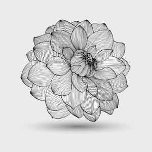Abstract Floral Flower Dahlia by Helga Pataki