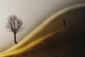 Golden Hills by Helge Andersen