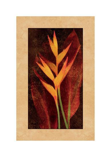Heliconia-John Seba-Giclee Print