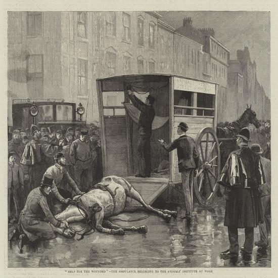 Help for the Wounded, the Ambulance Belonging to the Animals' Institute at Work--Giclee Print