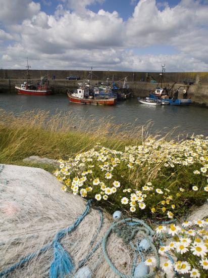Helvick Head Pier, County Waterford, Munster, Republic of Ireland, Europe-Richard Cummins-Photographic Print