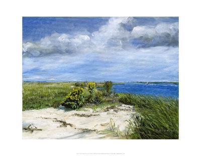 Hemlock Cove-Doug Zider-Art Print