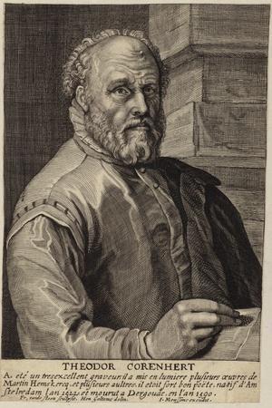 Portrait of Theodore Cornhert