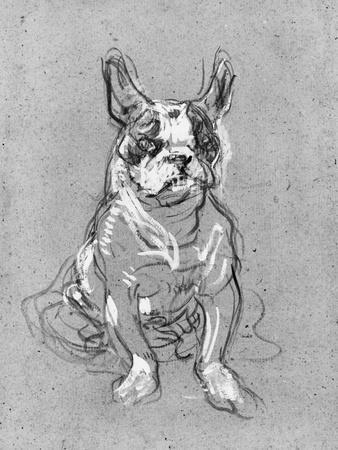 Bouboule', the Bulldog of Madame Palmyre at La Souris, 1897