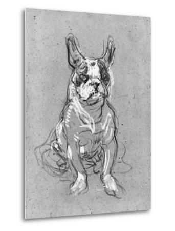 Bouboule', the Bulldog of Madame Palmyre at La Souris, 1897
