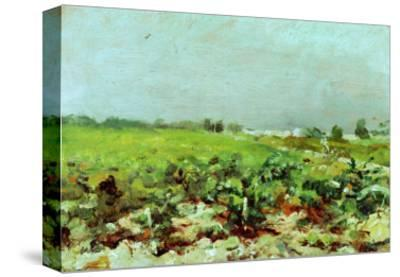 View of the Vineyards, 1880