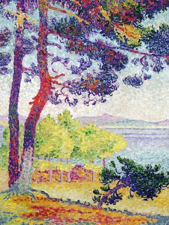 Afternoon at Pardigon, Var, 1907