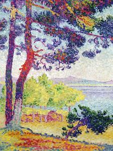 Afternoon at Pardigon, Var, 1907 by Henri Edmond Cross