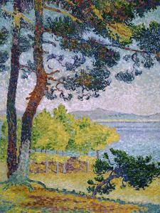 Afternoon at Pardigon by Henri Edmond Cross