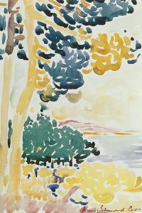 Pardigon by Henri-Edmond Cross