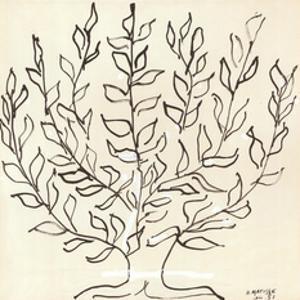 Le Platane by Henri Matisse