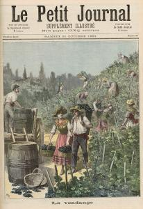The Wine Harvest, from Le Petit Journal, 31st October 1891 by Henri Meyer