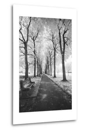 Brooklyn Botanic Gardens - Infrared Garden Walkway
