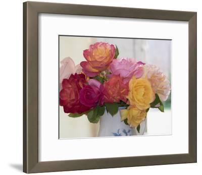 Garden Roses in Porcelain Pitcher