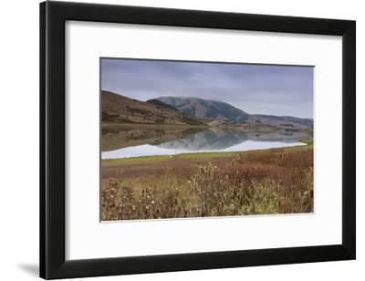Marin County Landscape in Fall