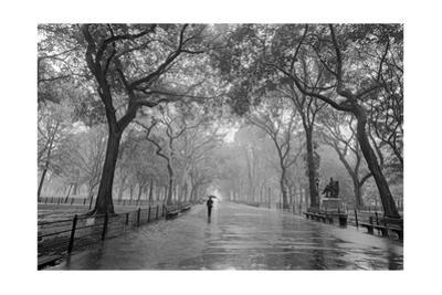 Poet's Walk, Central Park, New York City