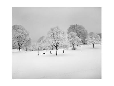 Prospect Park, Brooklyn In Snow2 - Winter Scene With Dog by Henri Silberman
