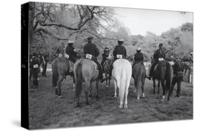 Prospect Park Police Horse Contest